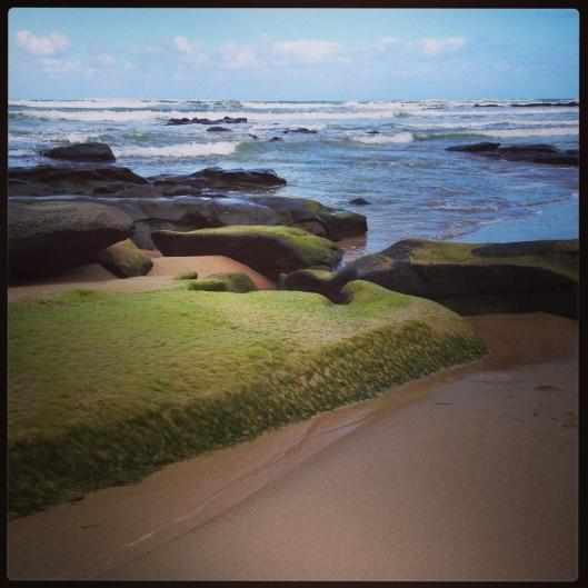 Shoreline, Great Ocean Rd, Victoria