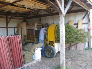 The tree baler ties trees up for easier transport