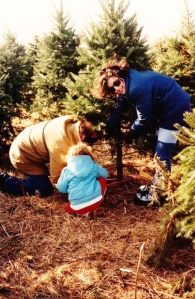 Myself, husband and 3yr old daughter cutting a tree for Mum