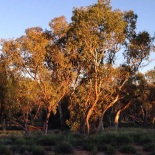 Early light along the River bed
