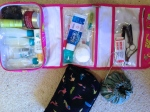 Toiletries, makeup and earring bag.
