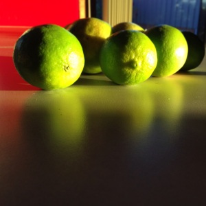limes in late afternoon sun