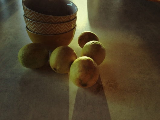 Accidental still life with citrus