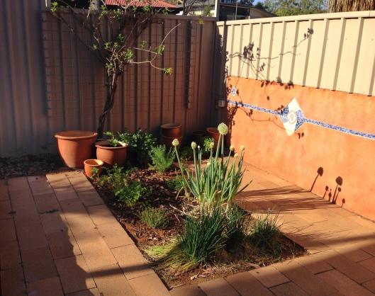 herb-garden-courtyard