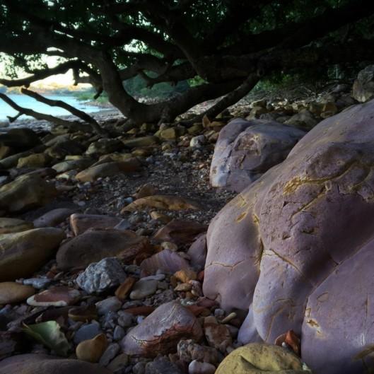 darwin-lameroo-beach