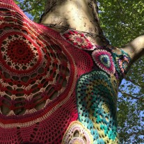 Yarn Bombed tree, Melbourne