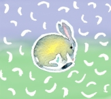 Hand painted Bilby