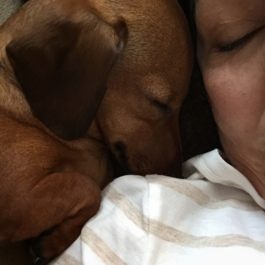 Afternoon nap, Nanna and grandpuppy