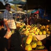 papaya-local-darwin