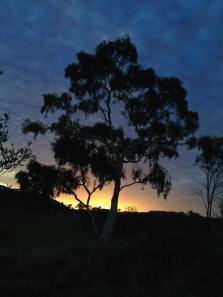 Just before sunrise, Alice Springs