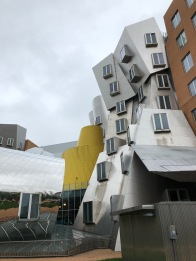 Frank Gehry Architecture, MIT, Boston, Massachusetts