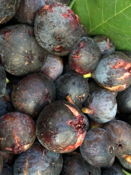 Like purple treasure, jammy figs!