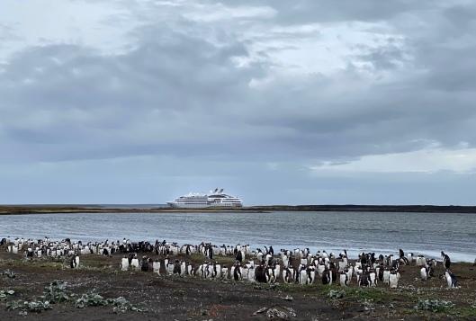 image of Ponant Cruises ship Le Lyrial